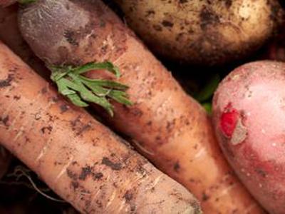 Alimentos-contaminados-afectaciones