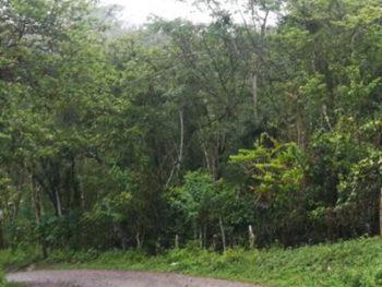 Cambio-climático-en-Nicaragua