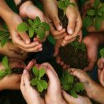 Educación ambiental principal eje de trabajo en el 2021